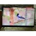 Телевизор BBK 50LEX8161UTS2C 4K Ultra HD на Android, 2 пульта, HDR, премиальная аудио система в Красноперекопске фото 9